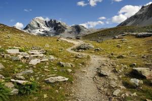Chemin menant vers le haut de la montagne